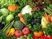 Голландские семена овощных культур