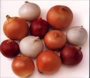 Семена,  удобрения,  суперабсорбент