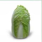 Предлагаем купить cемена пекинской капусты  Zena F1 / Зена (КИТАНО)