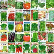 Голландские семена овощных культур в мелких фасовках оптом